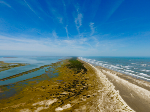 Barrier Island at the VCR -credit Castorani Lab
