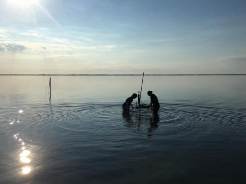 Students placing an aquatic eddy covariance system in South Bay - credit Berg Lab