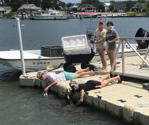 Retrieving salt water from the VCR dock